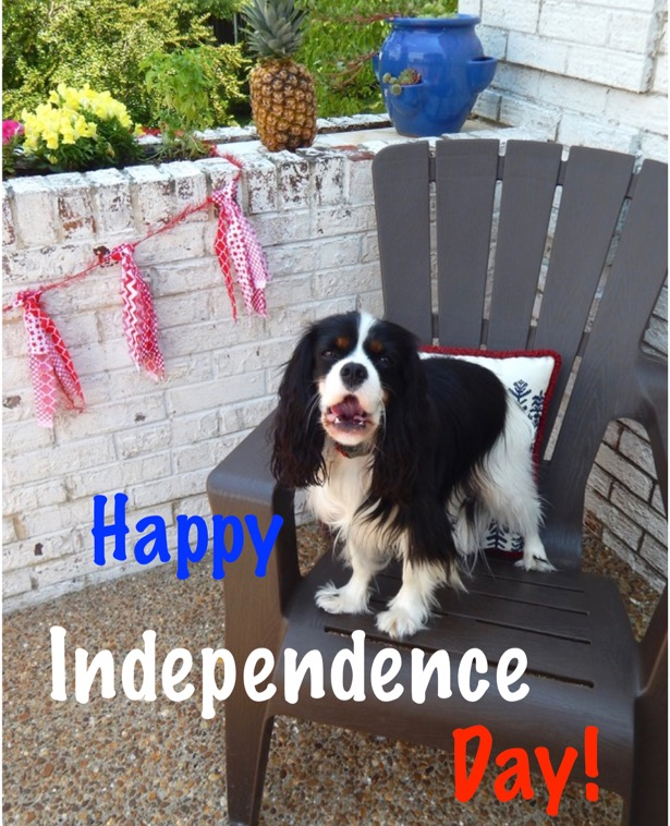 Henry says Happy Independence day (1)