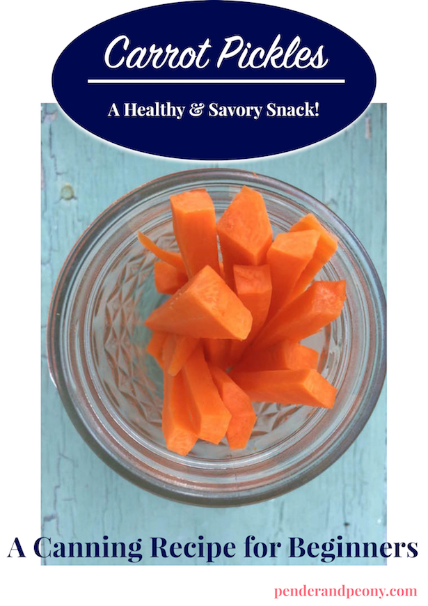 Try this easy recipe for canning carrot pickles. Get it on penderandpeony.com