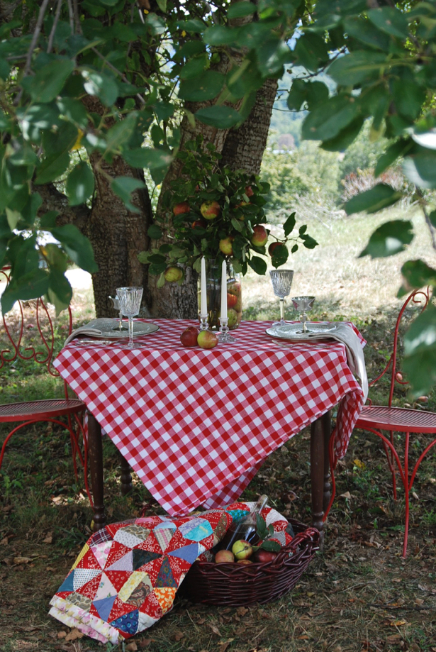 Feel inspired by this rustic and refined orchard tablescape. Set the table for two with elegant tableware and rustic elements for a lovely autumn tabletop. Use apples as your fall centerpiece.