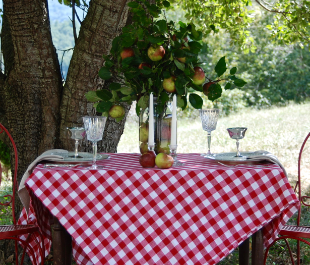 Feel inspired by this rustic and refined orchard tablescape. Set the table for two with elegant tableware and rustic elements. Use apples as your centerpiece.