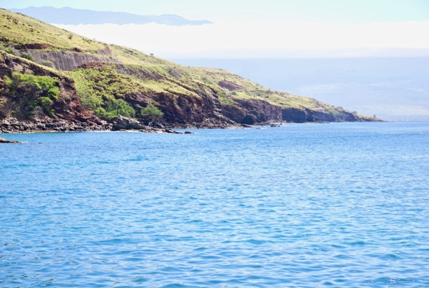 Exploring Hawaii's coral reefs, marine life, and pristine blue waters is an absolute requirement while visiting Maui. Head out on a glorious snorkeling adventure to Molokini with the Pride of Maui!