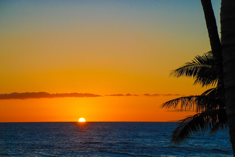 Experience the aloha spirit and Hawaiian Ho'okipa at a joyful Hawaiian luau.