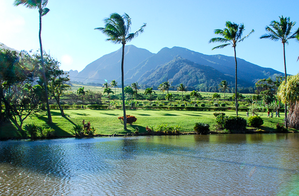 Explore Maui Tropical Plantation