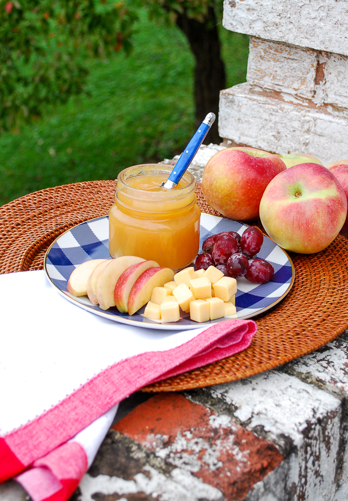 Jar of cinnamon ginger applesauce with grapes and cheese on gingham plate