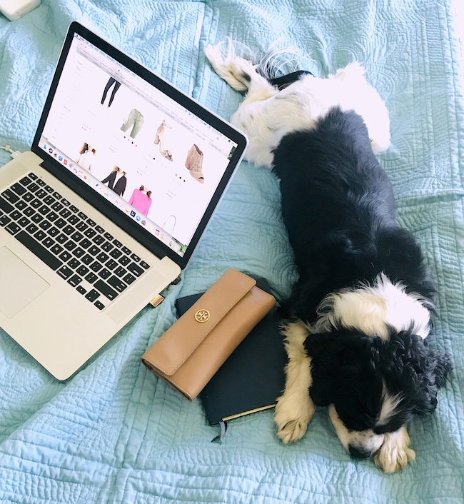 Open Apple computer with Henry the Cavalier King Charles Spaniel and my Labor Day sales picks