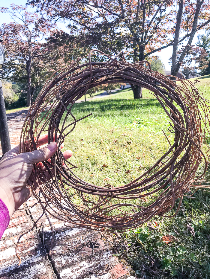 Blank grapevine wreath form - small