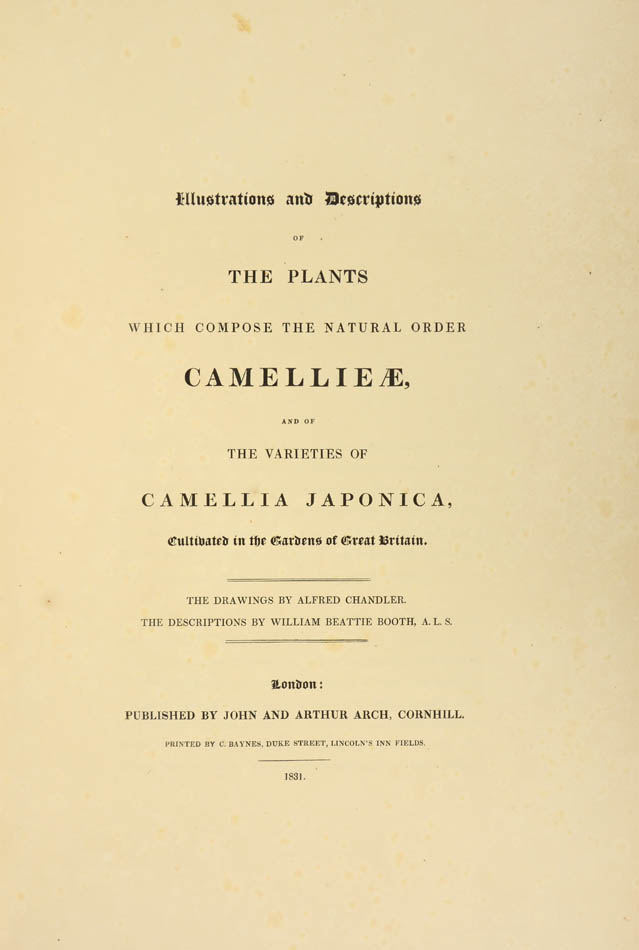 Title page of Camellia Book by William Chandler Booth and Alfred Chandler