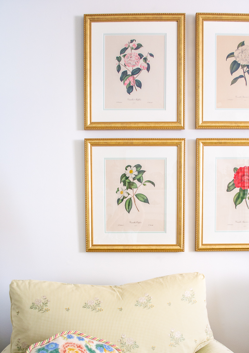 Camellia botanical gallery wall for my grandmillennial living room using antique prints and gold Granby frames from Frame It Easy