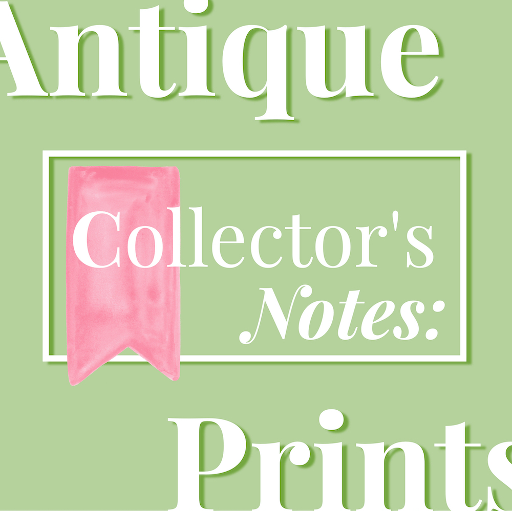 Collector's Notes: Antique Prints graphic in pink and green